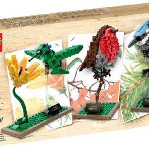 Lego 21301 Linnut